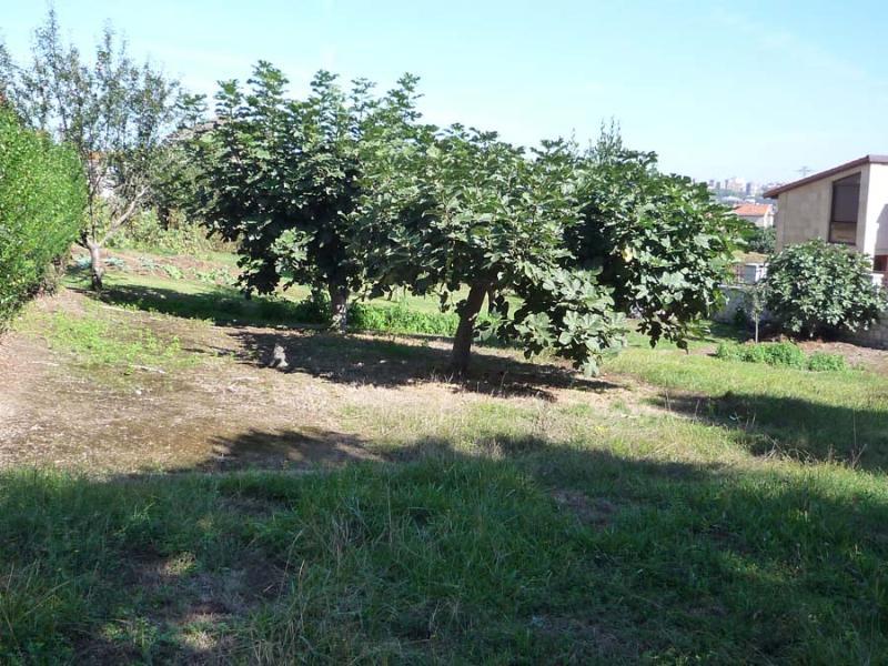 Finca Urbana en Muriedas (CANTABRIA) por 85.000 €