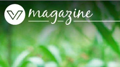 magazine vivendex viviendas de calidad
