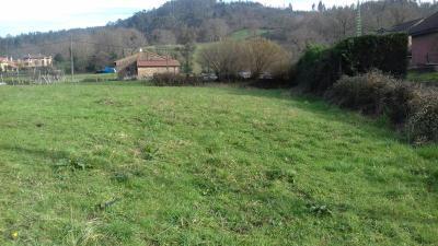 Finca en Guriezo (Cantabria)